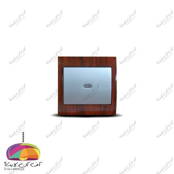 1486544937_589adfbc4551b866905_aryana wood 206-2