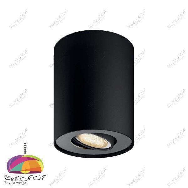 چراغ سقفی روکار استوانه مدیوم (2)